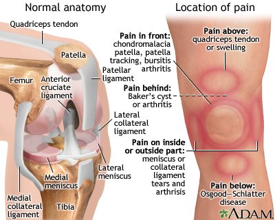 Pain In The Knee After Falling?
