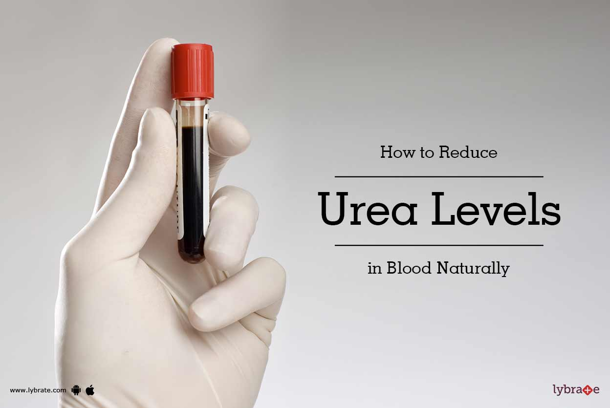 How To Reduce Ureum Levels In The Blood?