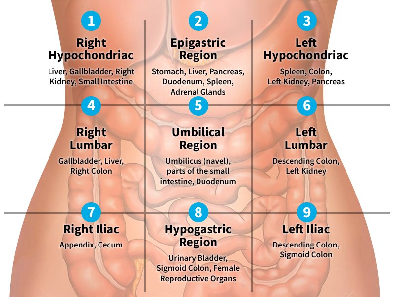 Causes Of Left Middle Abdominal Pain?
