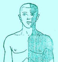 The Right Side Of The Body Feels Numb In Mild Stroke Sufferers?