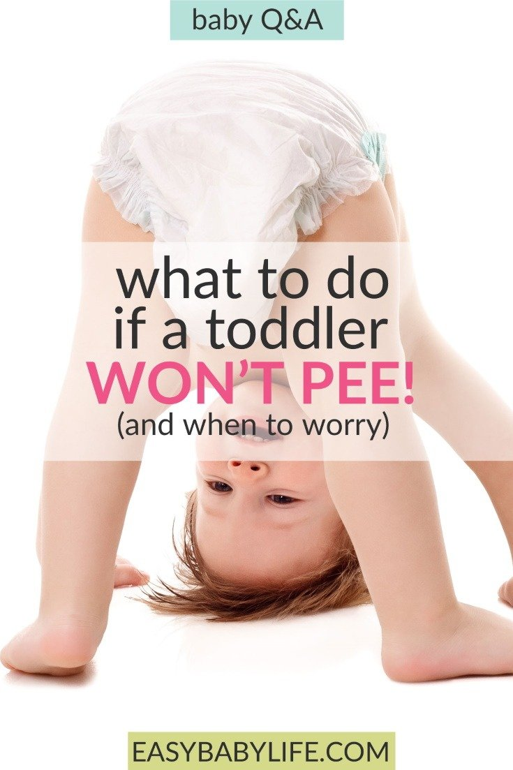 2-day-old Babies Haven't Peed All Day?