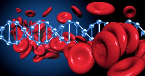 Causes And Dangers Of Blood Cancer?